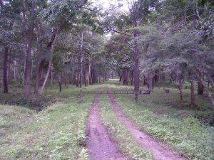 Vijayawada Rajiv Gandhi Park